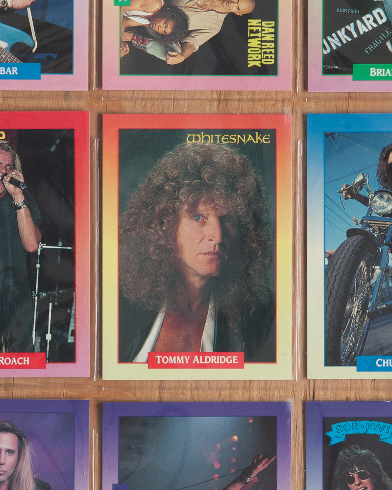 Tommy Aldridge, the forlorn poodle of hard rock.